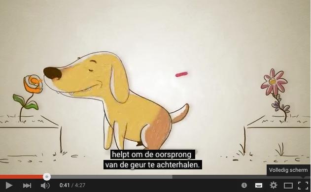honden neus